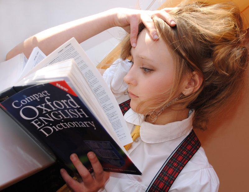 FX用語集を読む女性